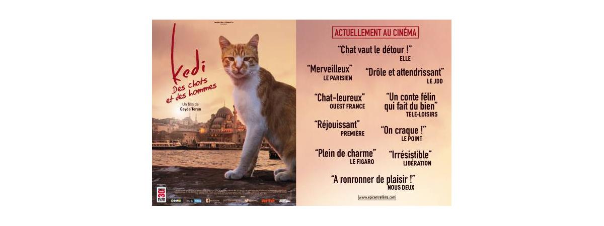 Un film à voir !