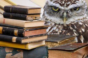 Nouvelles ressources en français pour le lycée