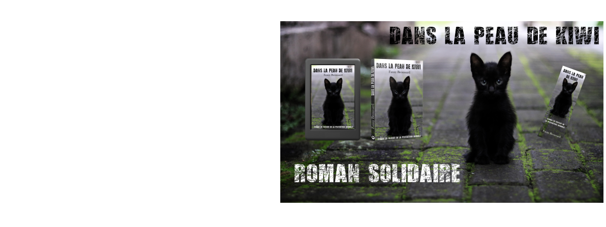 ROMAN SOLIDAIRE A SOUTENIR !